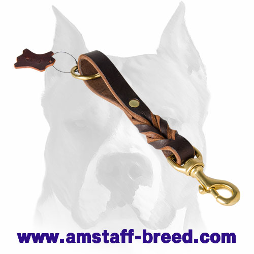 Natural materials leather dog leash with corrosion-free hardware for Amstaff