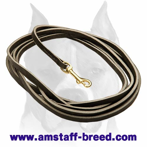 Amstaff leather dog leash with brass-plated snap hook