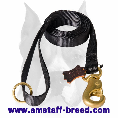 Nylon dog leash with rust-resistant hardware for Amstaff