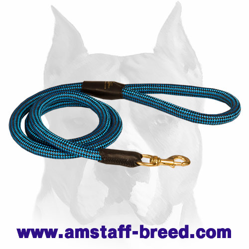 Amstaff dog leash made of nylon