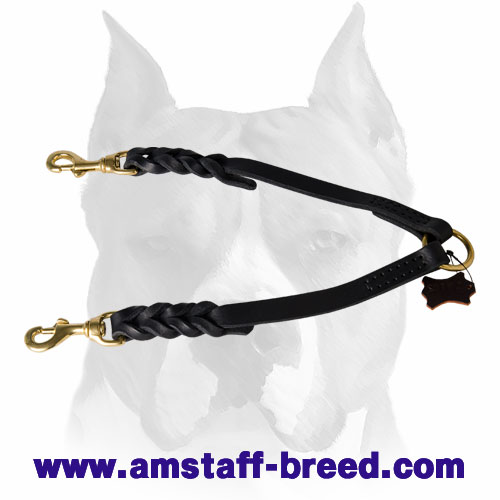 Amstaff leather dog coupler leash for two dogs with braid