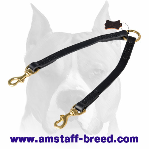 Amstaff leather dog coupler leash for two dogs