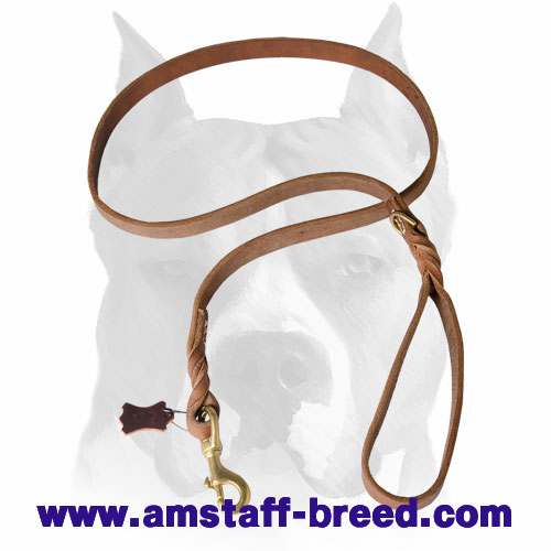 Amstaff leather dog leash