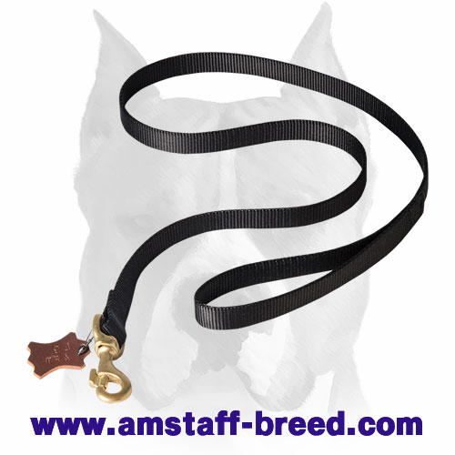 Amstaff nylon dog leash with corrosion-free materials