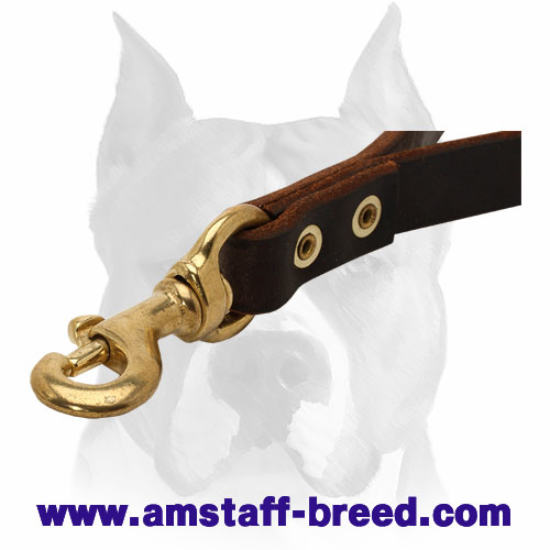 Brass snap hook on the brown leather dog leash for Amstaff