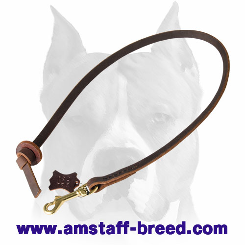 Amstaff short leather dog leash