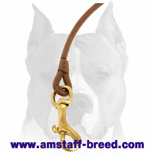 Amstaff thin leather dog leash with brass-plated snap hook