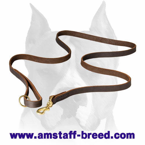 Amstaff leather dog leash with comfortable brass fittings