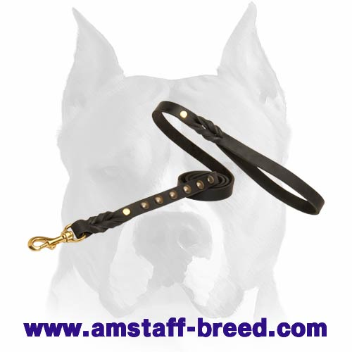 Amstaff leather dog leash with brass studs