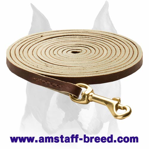 Amstaff leather dog leash for tracking