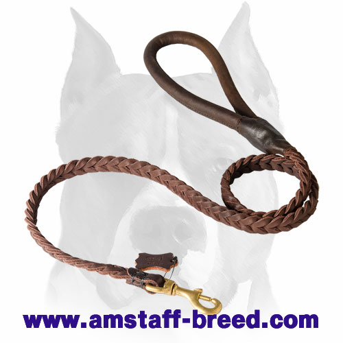 Leather dog leash with corrosion-free hardware for Amstaff