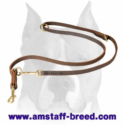 Amstaff leather dog leash with brass fittings