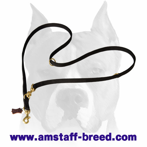 Amstaff nylon dog leash for different activities