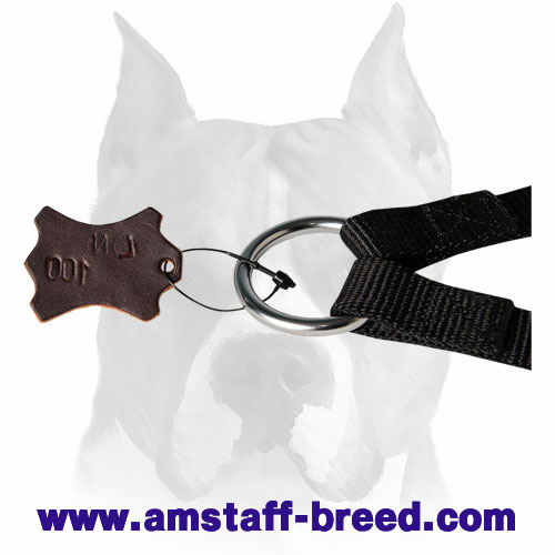 Amstaff nylon dog coupler leash for two dogs