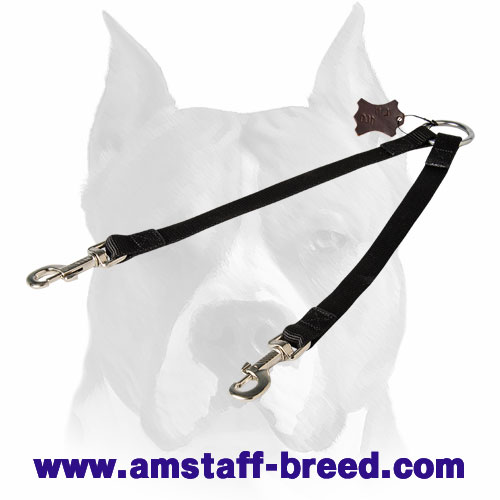 Short nylon dog coupler leash for Amstaff