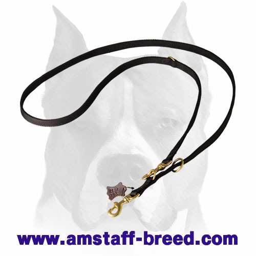 All-weather nylon dog leash for Amstaff