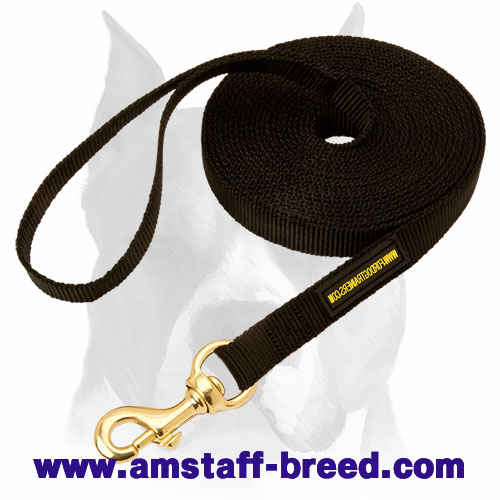 Amstaff nylon dog leash for walking and training