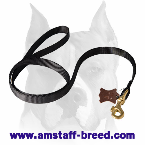 Nylon Amstaff leash for walking and training
