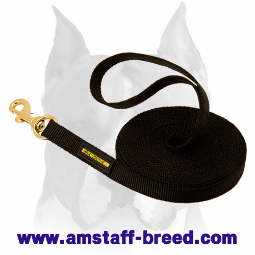 Nylon Amstaff leash