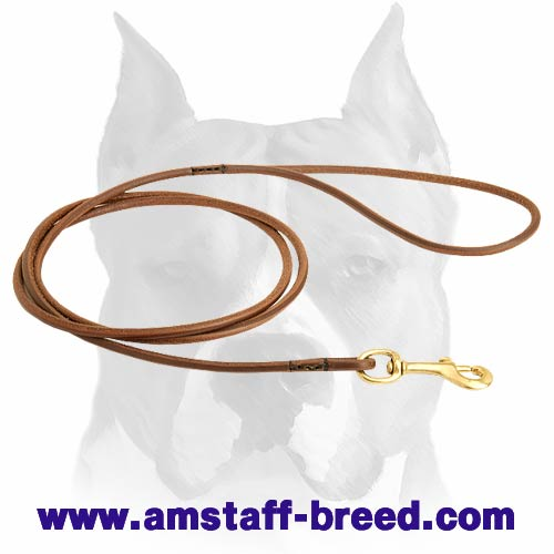 Amstaff leather dog leash with soft handle and brass-plated fittings