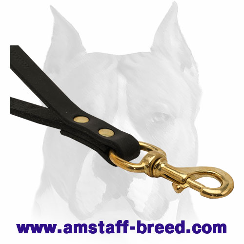 Full grain leather dog leash with brass fittings for Amstaff