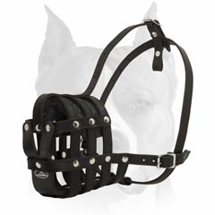 Leather muzzle for everyday usage