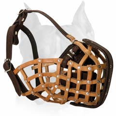 Designer leather muzzle for Attack/Agitation Training For Amstaff
