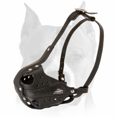 Amstaff dog muzzle leather for military work