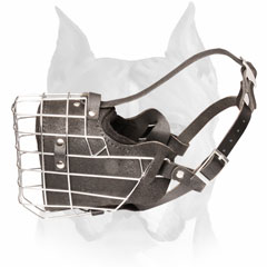Padded leather Amstaff dog muzzle metal caged