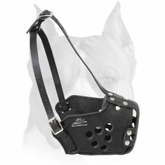 Amstaff training muzzle leather