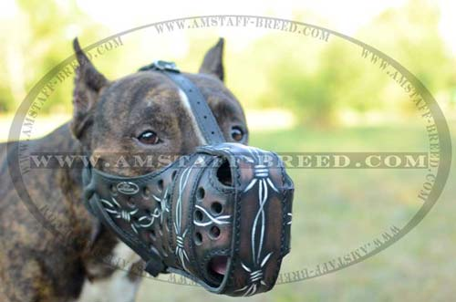 Durable Decorative Leather Muzzle