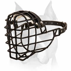Buckled Wire Basket Muzzle For Amstaff