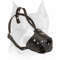 Amstaff Leather Buckled Muzzle