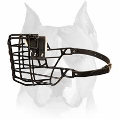 Wire Cage Buckled Muzzle