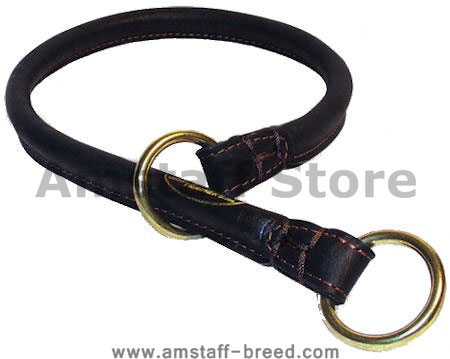 Buy Rolled Leather Dog Collar/Choke Collar for Amstaff