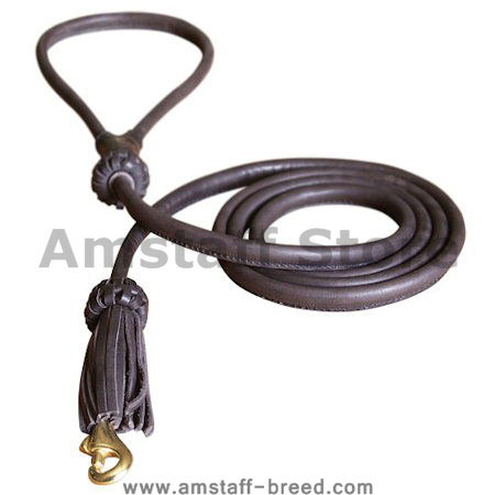Rolled Leather Dog Leash 4 foot Round lead for Amstaff